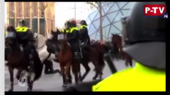 Zamieszki w Eindhoven oraz Amsterdamie!