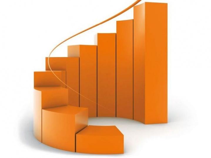 Sanna Consulting - usługi księgowe online w Holandii
